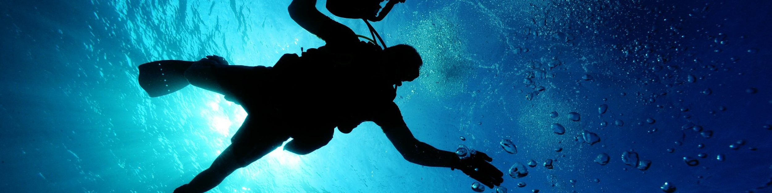 Anse Caraibe Plongée